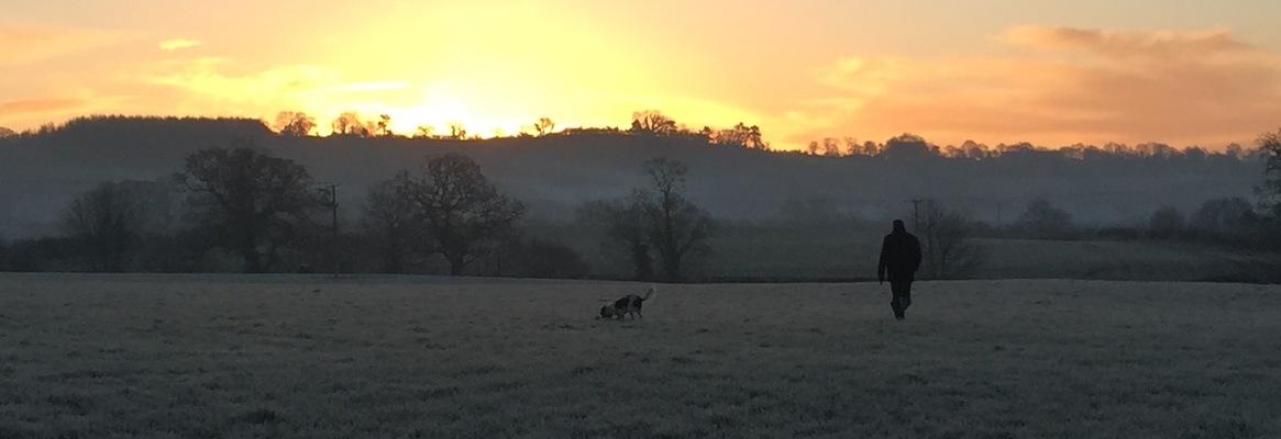 Morning view.full